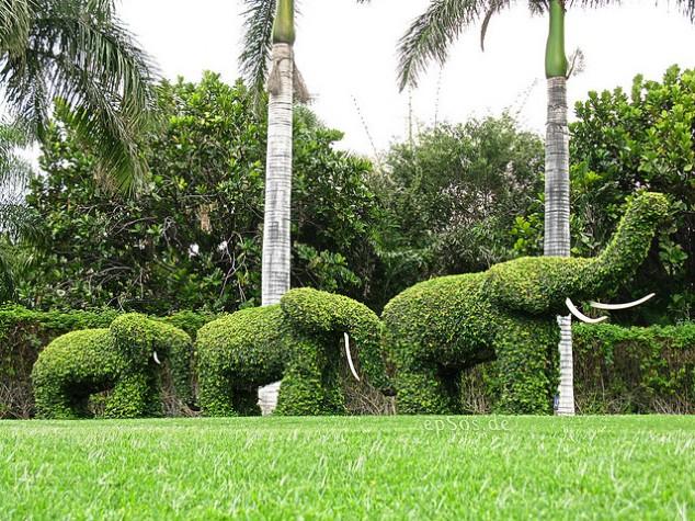 Most-Amazing-Grass-Sculptures-12-634x475 23 Remarkable Grass Sculptures
