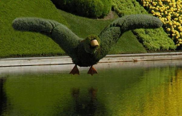Most-Amazing-Grass-Sculptures-20 23 Remarkable Grass Sculptures