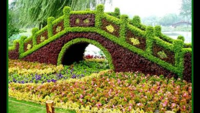 Photo of 23 Remarkable Grass Sculptures