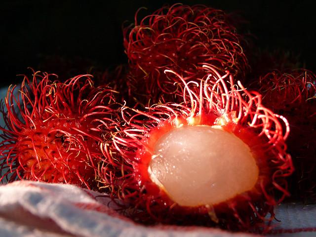 Rambutan 19 Weird Fruits From Asia, Maybe You Have Never Heard Of