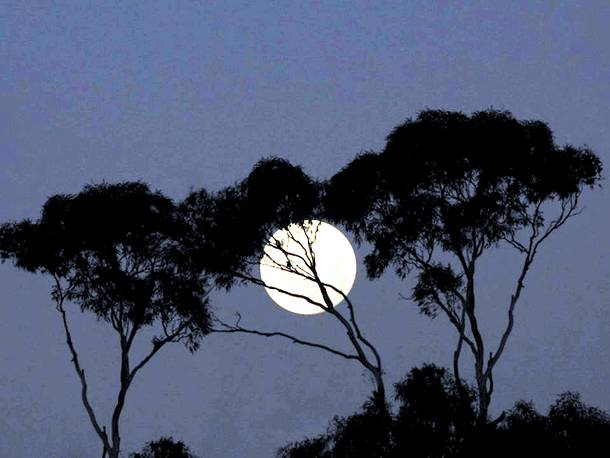 Slide427 15 Stunning Images Of A Supermoon Taken In Different Locations