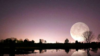Photo of 15 Stunning Images Of A Supermoon Taken In Different Locations