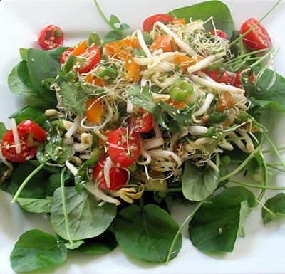 Watercress-Salad-18 For Health Seekers, Watercress Has Bountiful Health Benefits