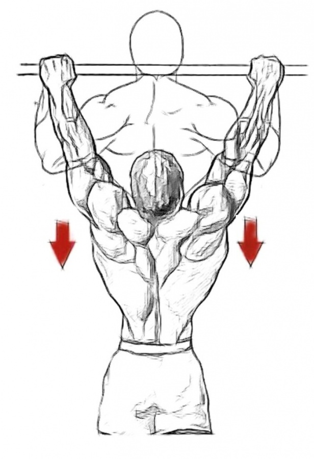 back1 10 MMA Workouts to Achieve Fitness
