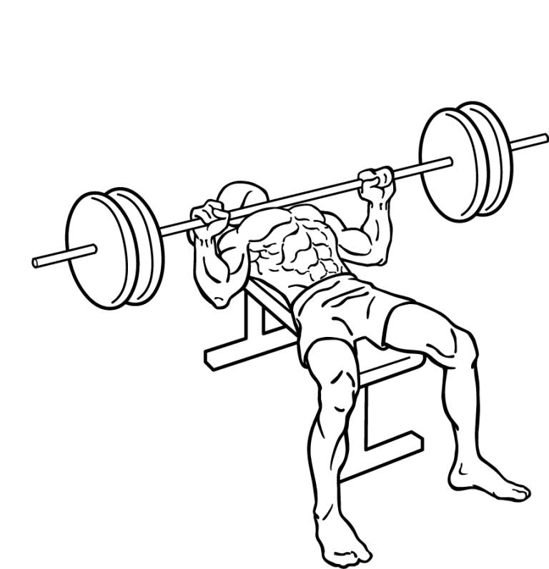bench-press-2 10 MMA Workouts to Achieve Fitness