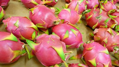 Photo of 19 Weird Fruits From Asia, Maybe You Have Never Heard Of