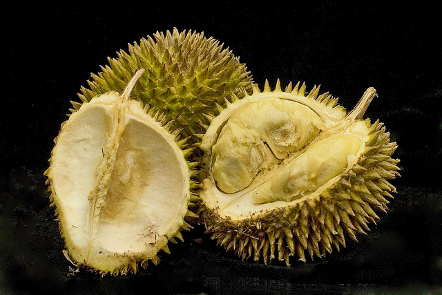 durian 19 Weird Fruits From Asia, Maybe You Have Never Heard Of