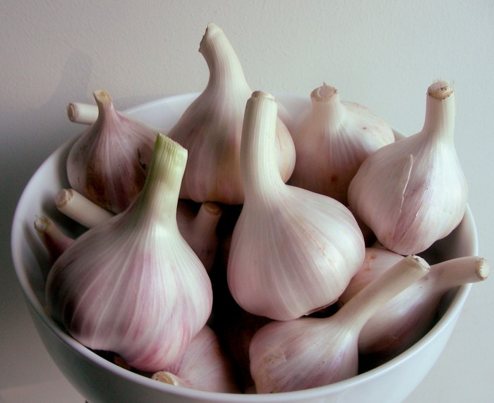 garlic 10 Foods That Could Fight The Aging Signs On Your Body