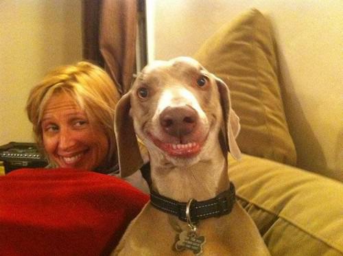 grinningdog1 19 Animals Making Funny Faces