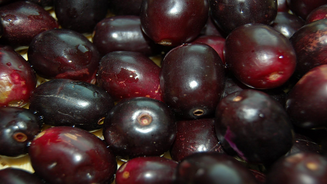 java-plum 23 Weird Fruits Which You Probably Have Never Eaten Before, But Should