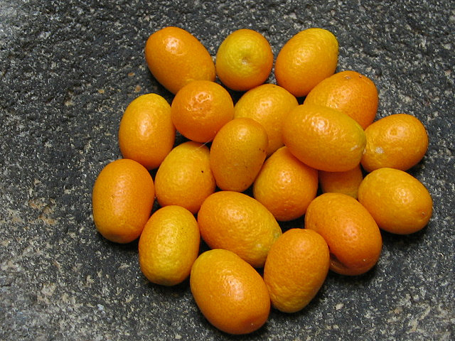 kumquat 19 Weird Fruits From Asia, Maybe You Have Never Heard Of