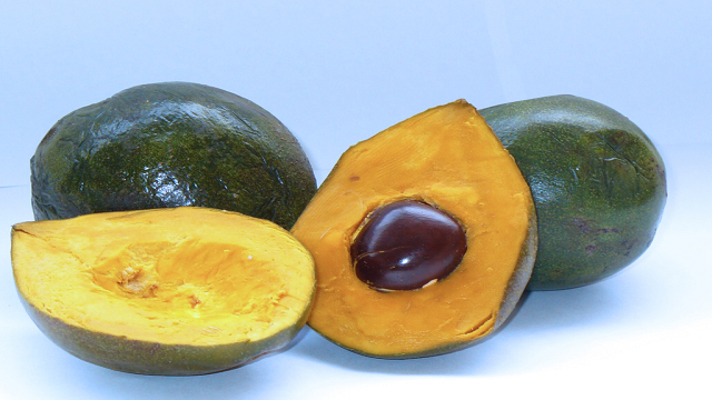 lucuma 23 Weird Fruits Which You Probably Have Never Eaten Before, But Should