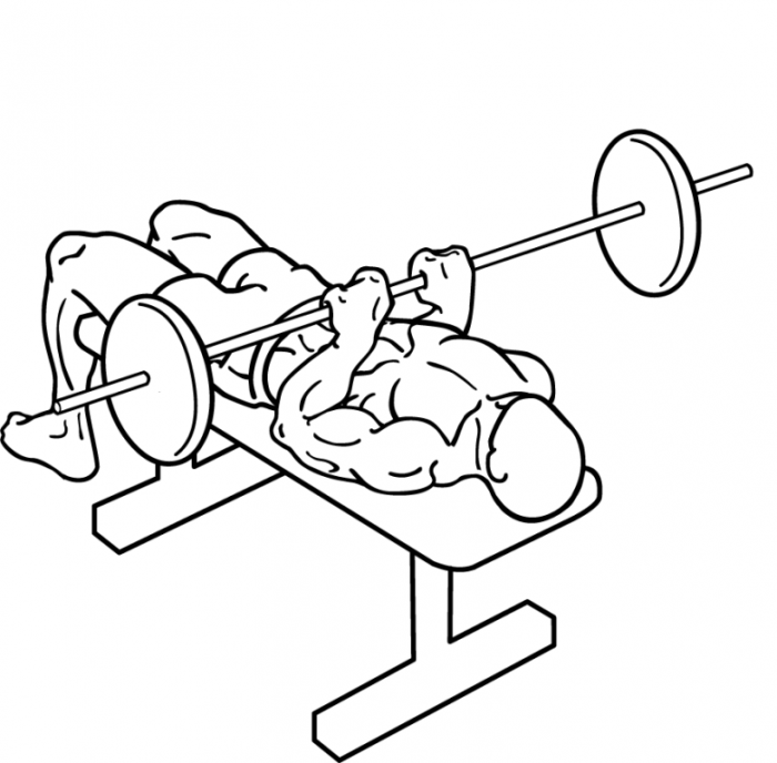 narrow-grip-bench-press-2 What Are the Military Workouts?