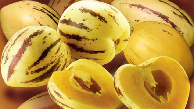 pepino 23 Weird Fruits Which You Probably Have Never Eaten Before, But Should