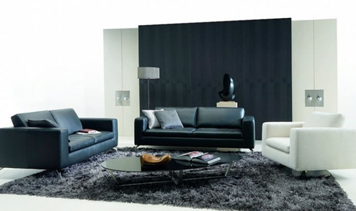 pictures-black-white-living-rooms-4 +20 Modern Ideas For LivingRooms Designs