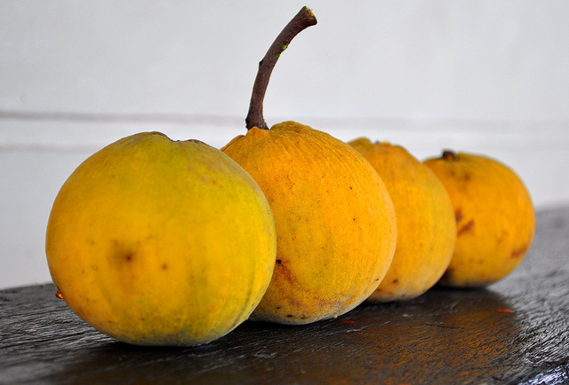 santol 19 Weird Fruits From Asia, Maybe You Have Never Heard Of
