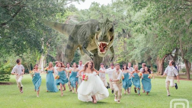 weddingpartychased1 Do You Know How to Create a Wedding Website?