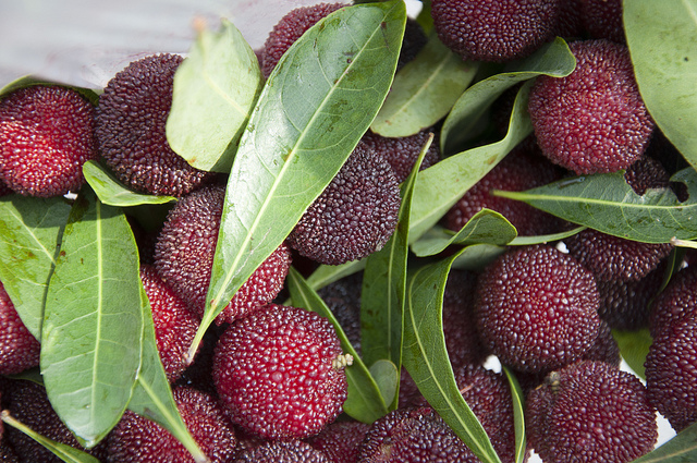 yangmei 19 Weird Fruits From Asia, Maybe You Have Never Heard Of