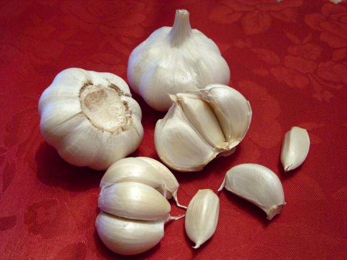 115252_1257716778_dba9_p Take Advantage Of Garlic In 5 Steps