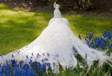 Photo of Weird Peacocks Wear Wedding Dresses