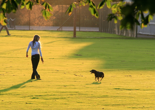 Dog-Walking 6 Steps To Stay Naturally Beautiful