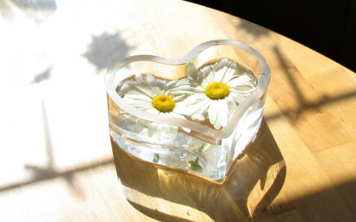 Heart-Chamomile Do You Know How to Overcome Asian Glow?