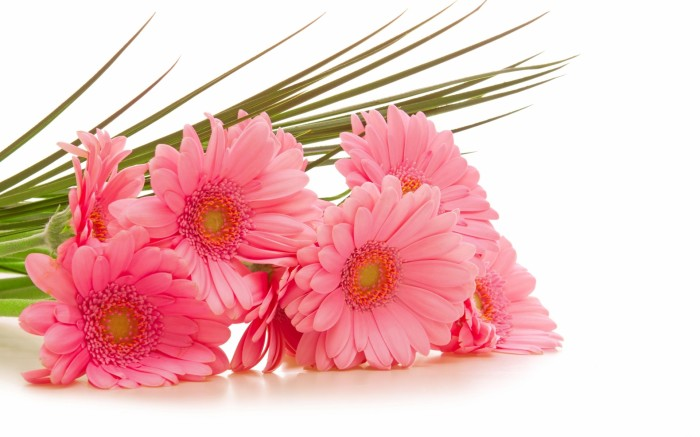 bouquet-flowers-wallpapers-hd-17 10 Inexpensive and Fabulous Spring Gift Ideas