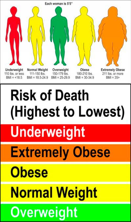 different-weights Are you Overweight, Underweight, Obese or at a Normal Weight?