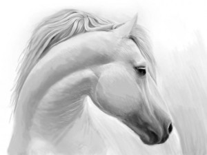 how-to-draw-a-horse-300x225 how-to-draw-a-horse