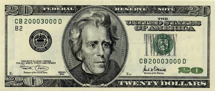 20dollarbill Turn $100 into $6,500 in Less than 5 Weeks with Easy Pips Formula