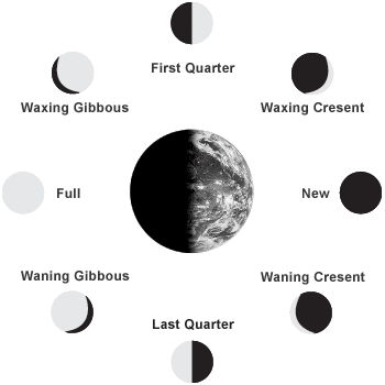 402563-1 The Monthly Cycle Of The Moon And Its Phases