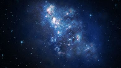 """Photo of """"z8_GND_5296"""" Has Been Detected to Be the Most Distant Galaxy"""