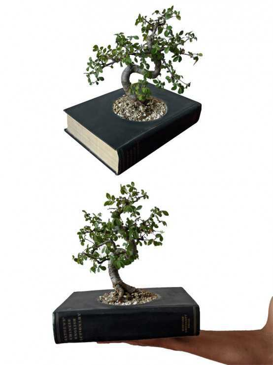 Decorative-Indoor-Planters 15 Fascinating & Unusual Christmas Presents