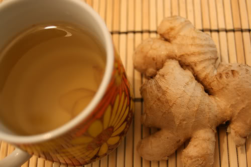 GingerTea 5 Reasons Why To Drink Ginger Tea This Winter