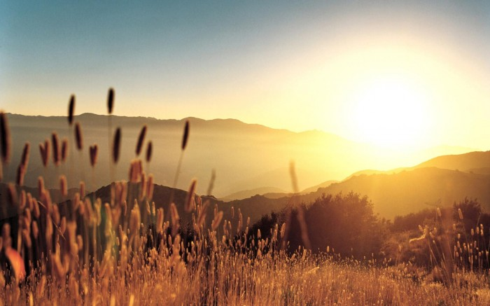 Morning-Sunrise-Mountain-Grass-Landscape Basic Information And Facts About The Sun