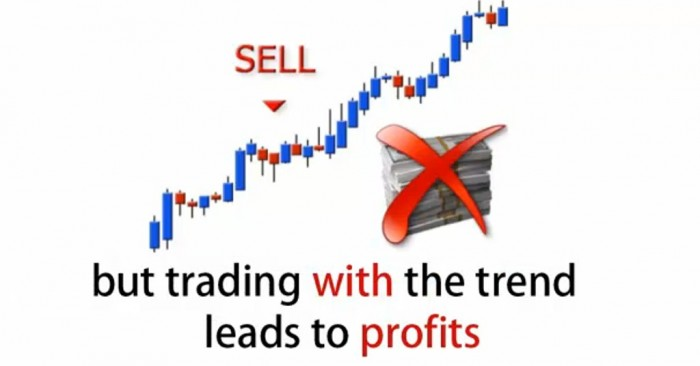 New-Picture-215 Get the Best Forex Trends with the Help of Forex Trendy