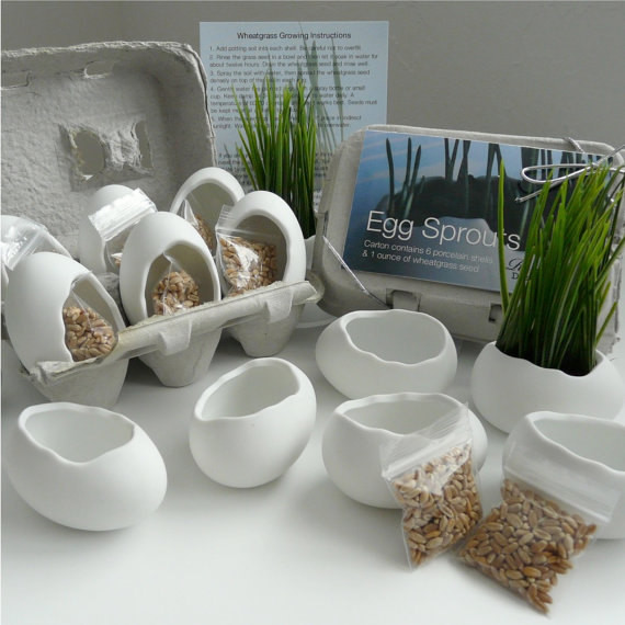 contemporary-indoor-pots-and-planters 15 Fascinating & Unusual Christmas Presents