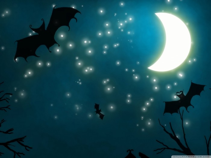 halloween_night-wallpaper-1152x864 Oh My God! Did You Hear Such a Scary Voice Before?