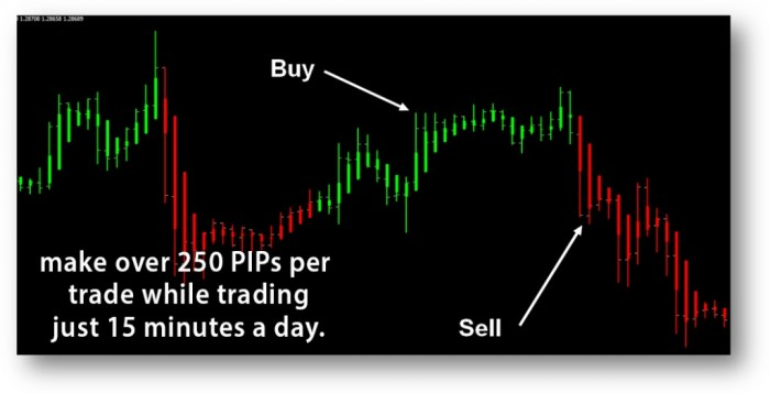 image002 Turn $100 into $6,500 in Less than 5 Weeks with Easy Pips Formula