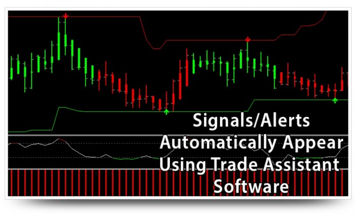 images009 Turn $100 into $6,500 in Less than 5 Weeks with Easy Pips Formula