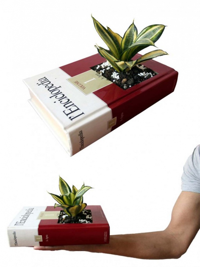 indoor-planters-collection 15 Fascinating & Unusual Christmas Presents