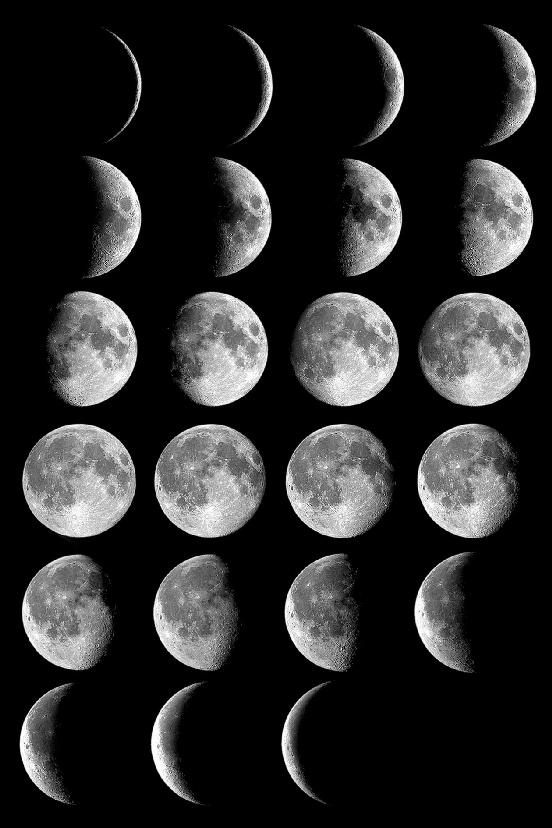 moon-phases-lrg-cidadao-sm The Monthly Cycle Of The Moon And Its Phases