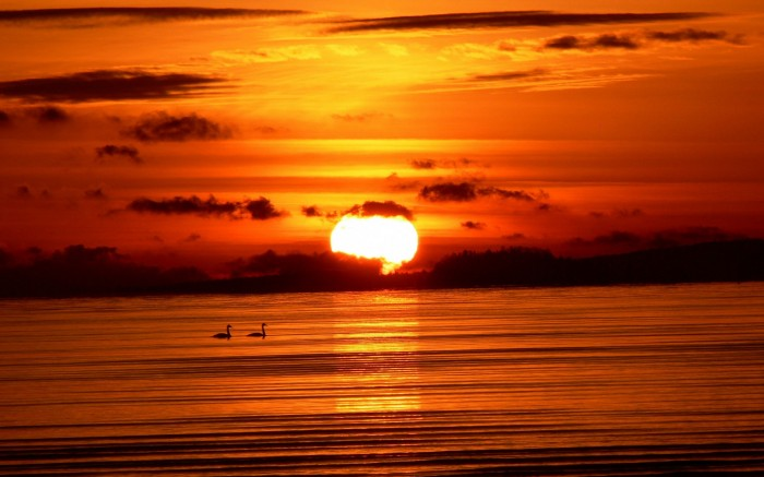 sunset-sea-birds-hd-wallpapers-30597 Basic Information And Facts About The Sun