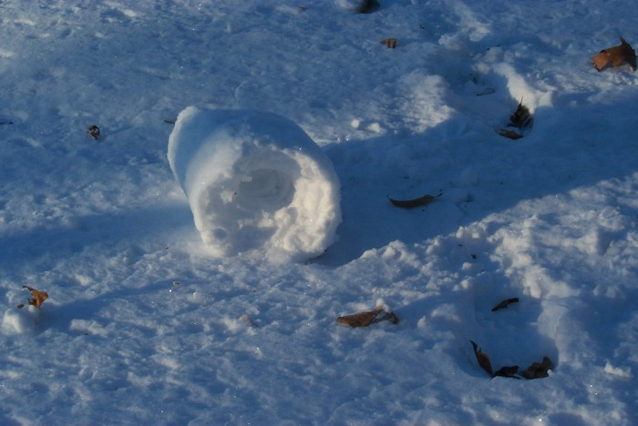 182625648_871ad6d609_b Stunning Snow Rollers that Are Naturally & Rarely Formed