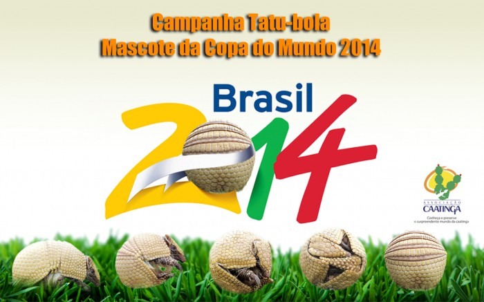 2014-FIFA-World-Cup-Wallpaper $90-$900 for a Ticket to Attend the 2014 FIFA World Cup Matches