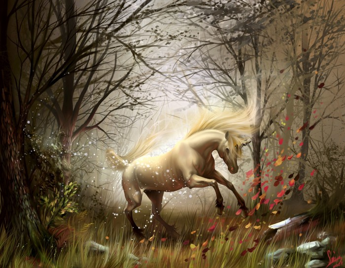 224470 Know 10 Points Of Information About The Unicorn