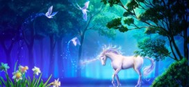 Know 10 Points Of Information About The Unicorn