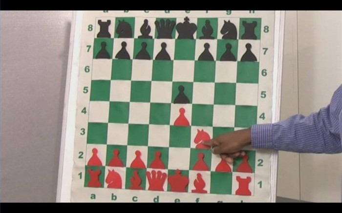 6523_185879634908778_1230074998_n-300x2251-800x5004 Do You Want to Become a Better Chess Player?