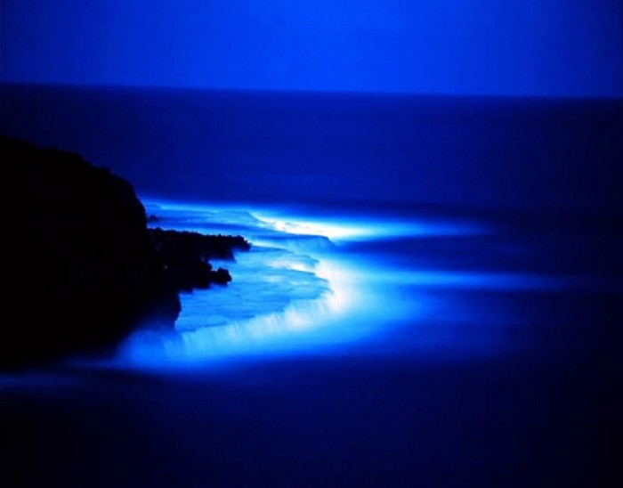 Glow-10 Magnificent and Breathtaking Blue Waves that Glow at Night