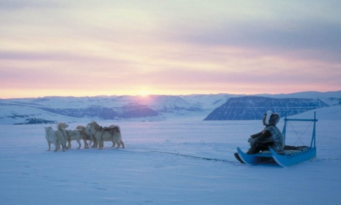 N-Greenland-dogsled Adventure Travel Destinations to Enjoy an Unforgettable Holiday